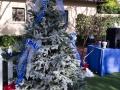 2014 Woodbury Christmas-8